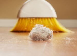 Уборка помещения как профилактика аллергии