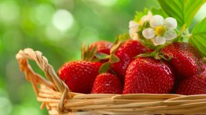 Симптомы и лечение аллергии на клубнику