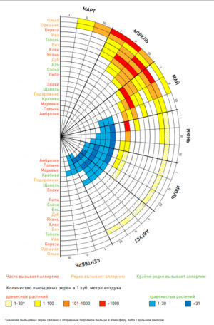 Календарь аллергии весна-осень