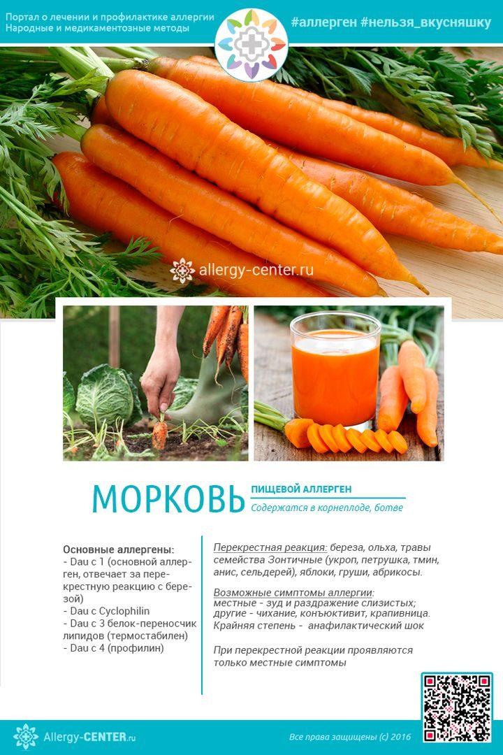 Карточка аллергена из статьи Может ли быть аллергия на морковь у ребенка и взрослого и как с ней справиться