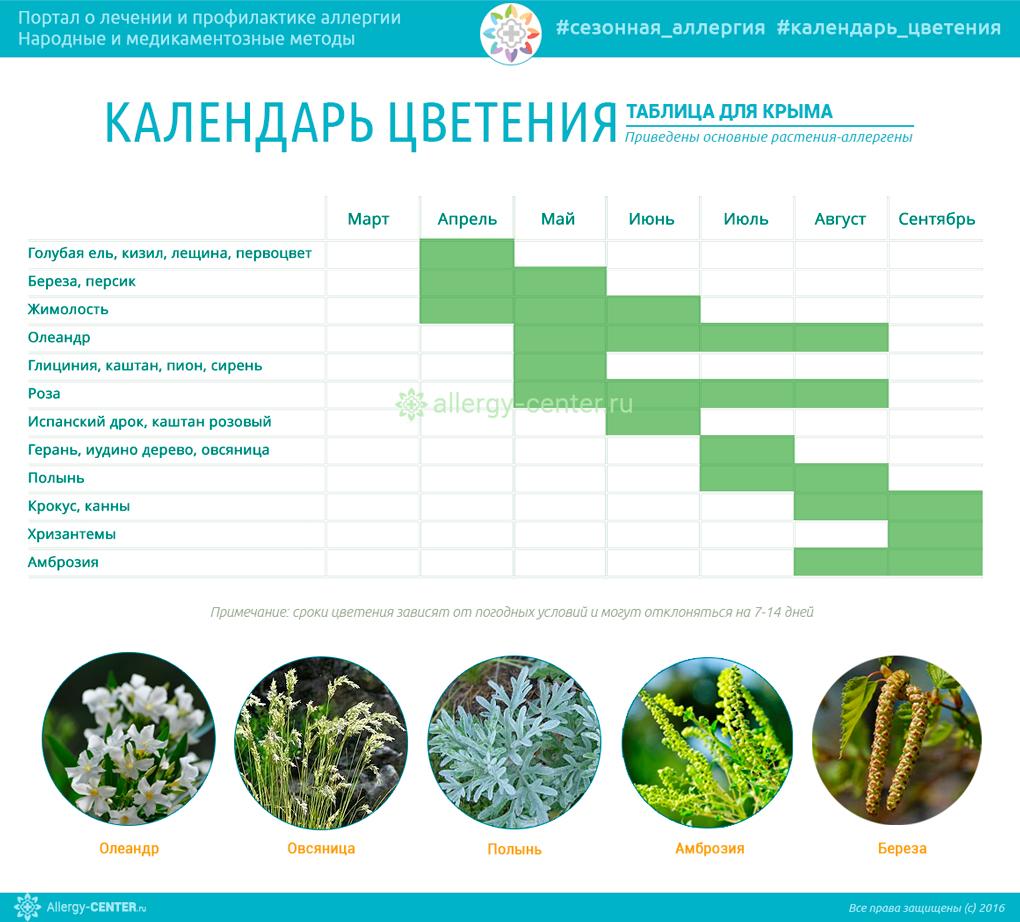 Календарь цветения для Крыма