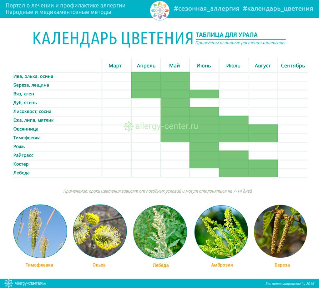 Календарь цветения для Урала
