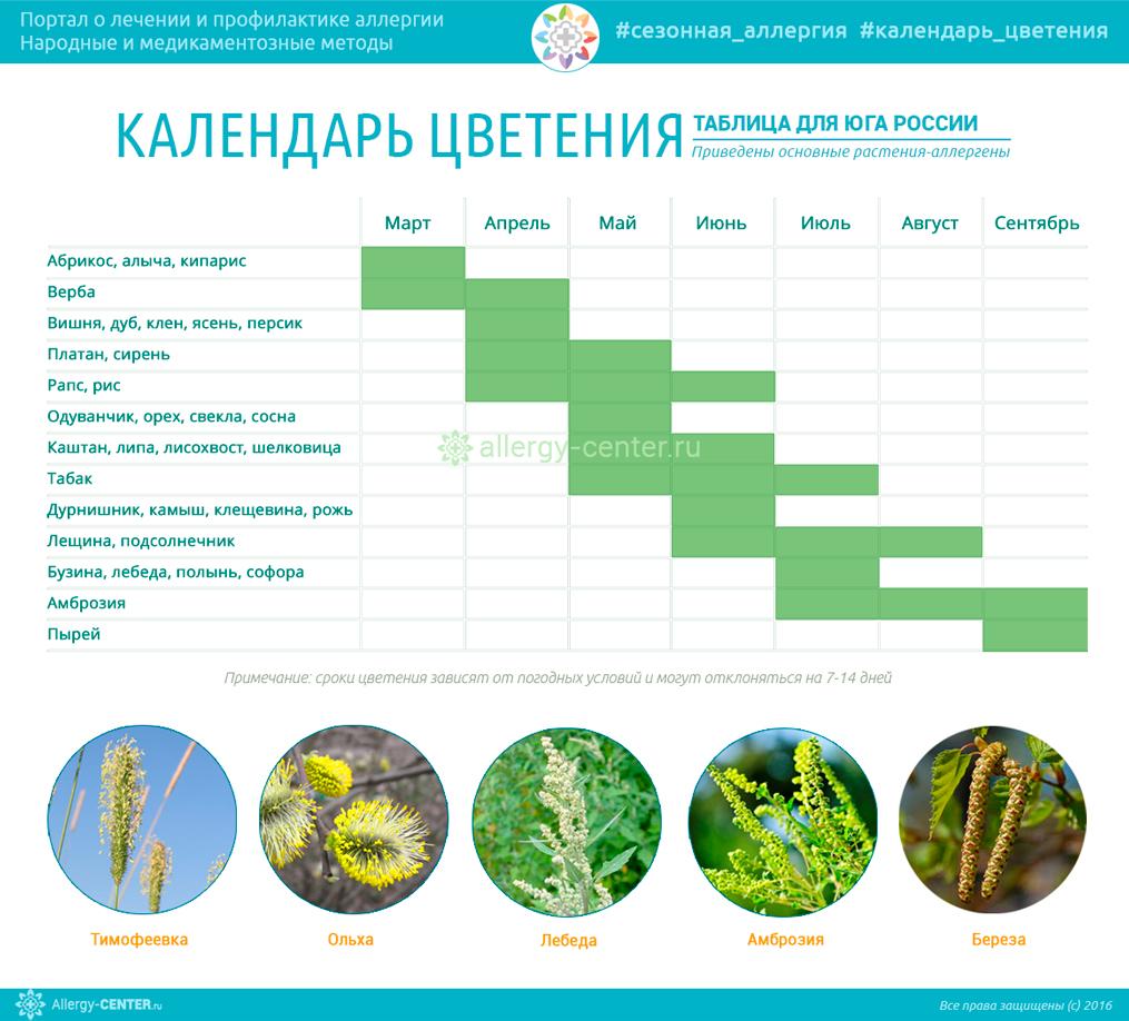 Календарь цветения для аллергиков Юга России