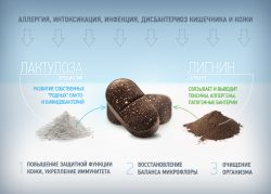 Лактофильтрум при аллергии - как это работает