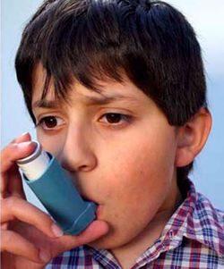 Астма у ребенка как результат гиперчувствительности к плесени
