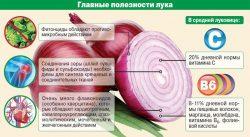 Инфографика с описанием пользы лука