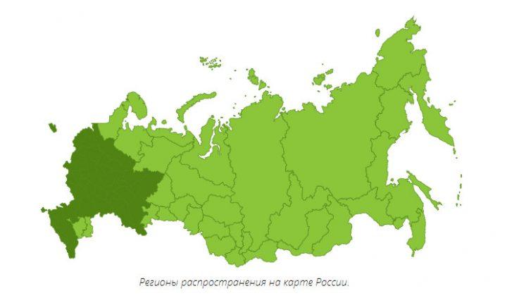Регионы распространения дуба