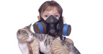 Миниатюра к статье Аллергия на животных - есть ли решение проблемы?