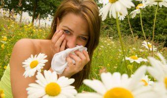 Миниатюра к статье Чихать или не чихать, или лечение поллиноза