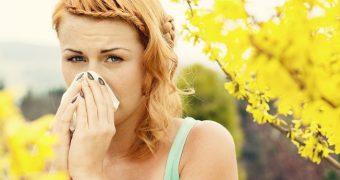 Миниатюра к статье Аллергия летом - как спасти отдых